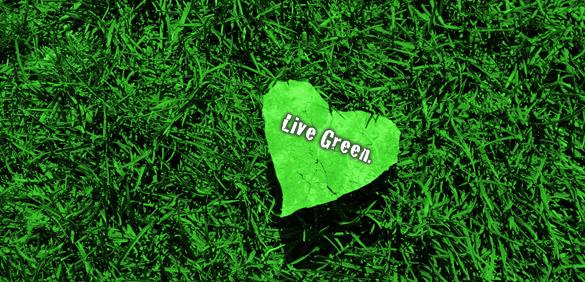 Principles of green living